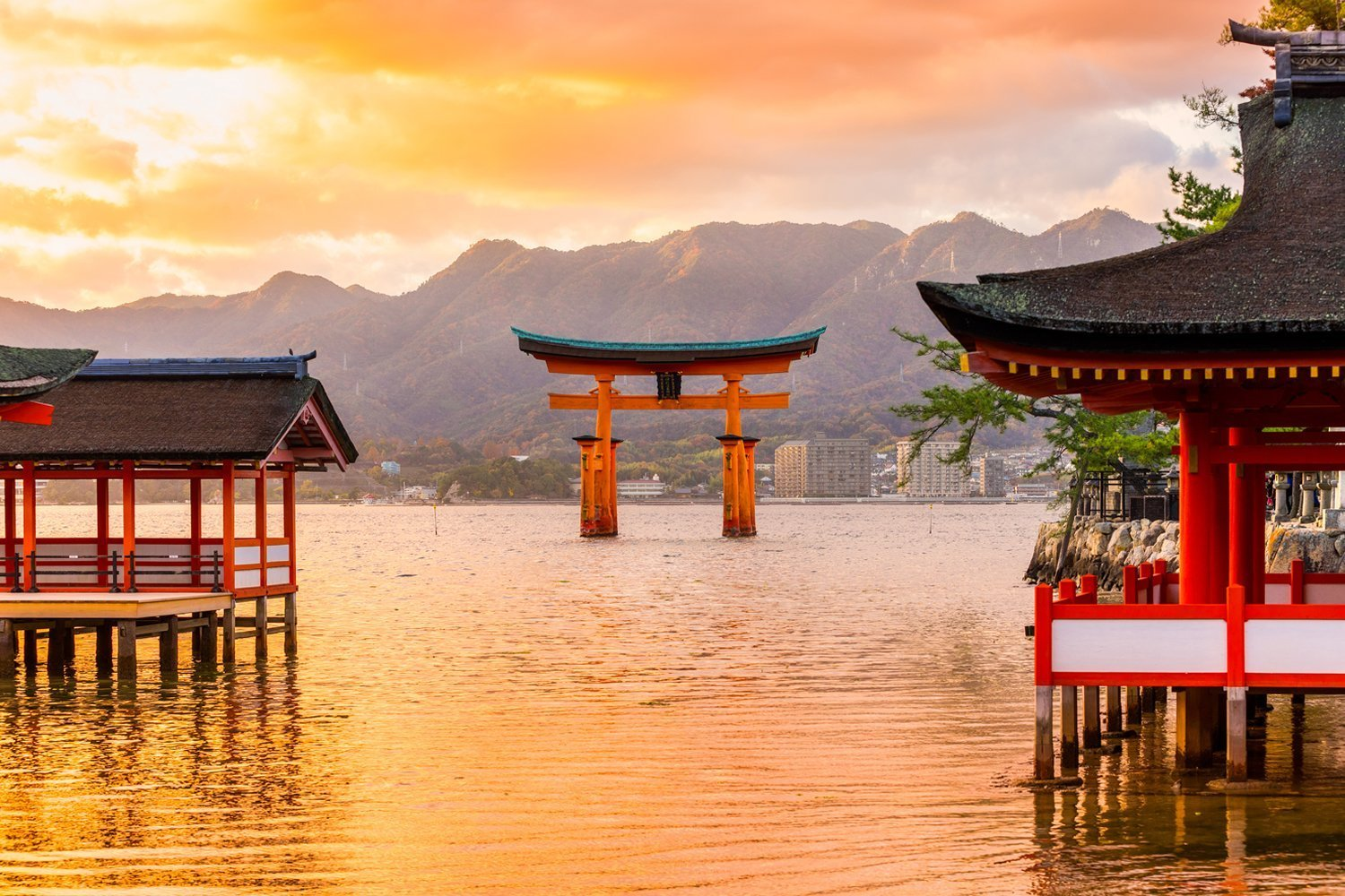 Miyajima Walking Tour Private Package Tours