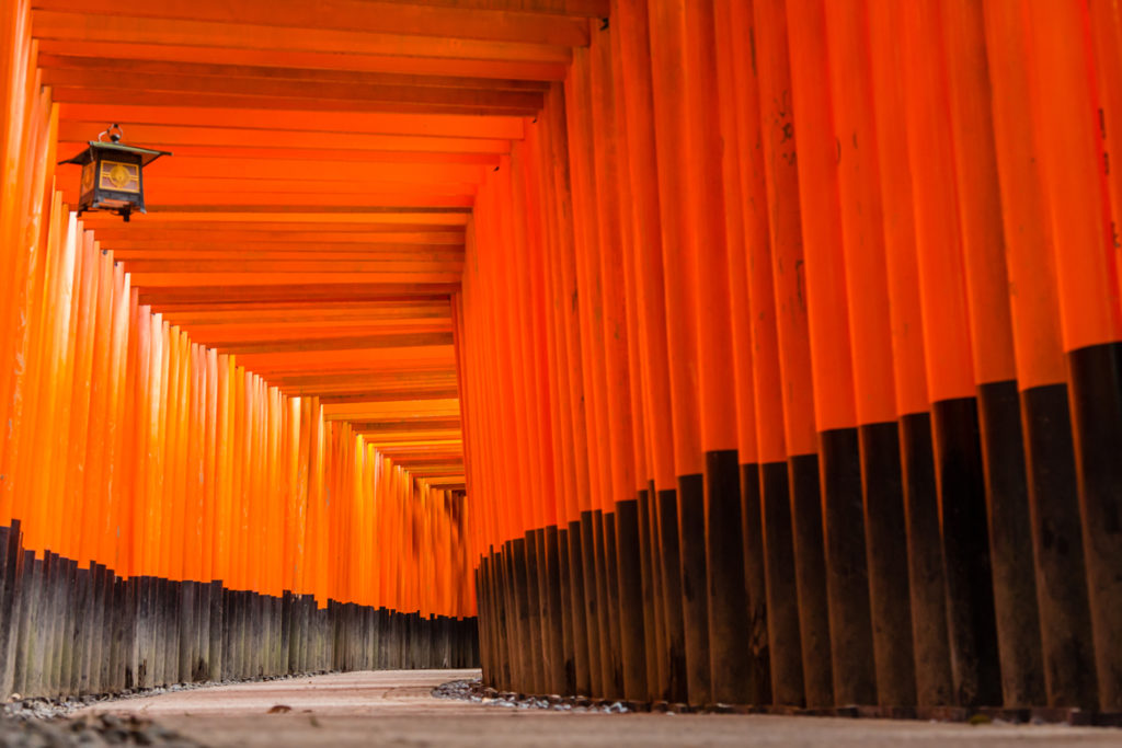 Kyoto Fushimi Inari Private Package Tour