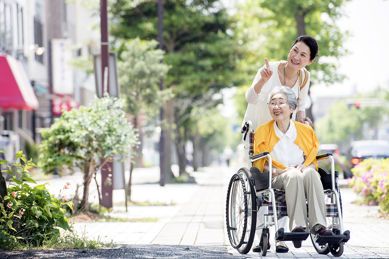 Wheelchair Accessible Osaka Private Package Tour