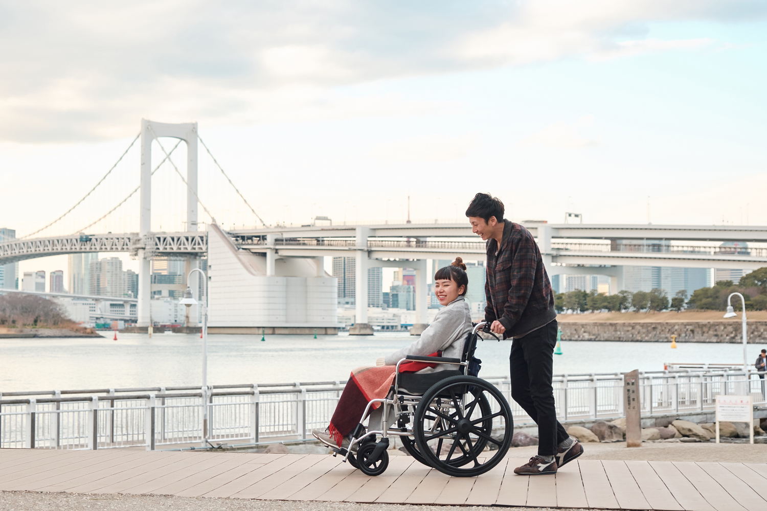 Tokyo Wheelchair Accessible Private Package Tour
