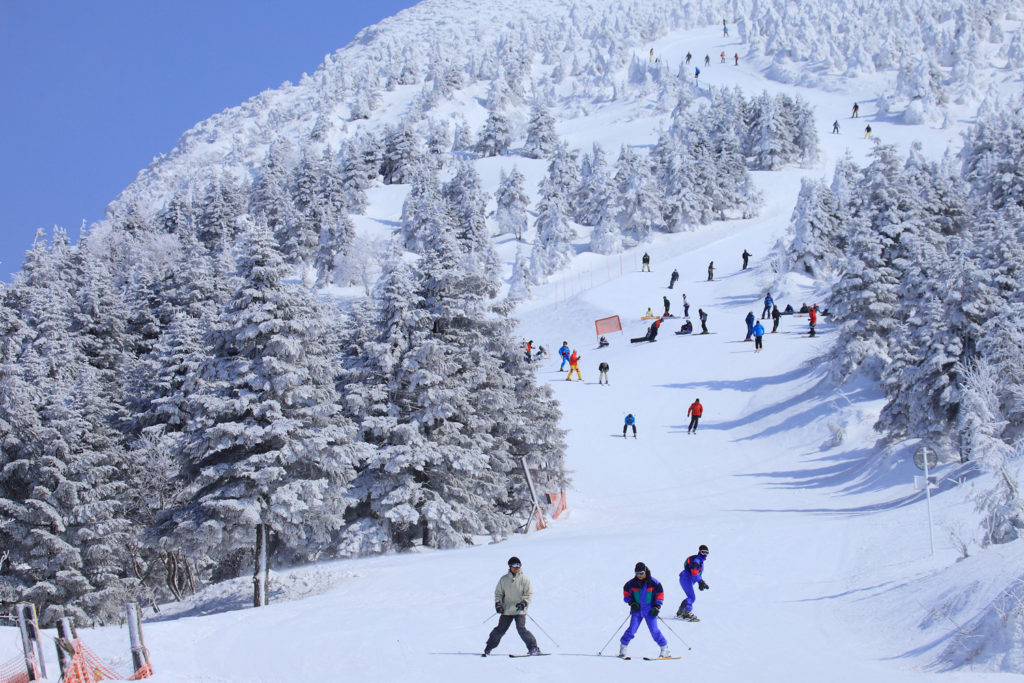 Yamagata Zao Onsen Ski Resort Private Package Tour