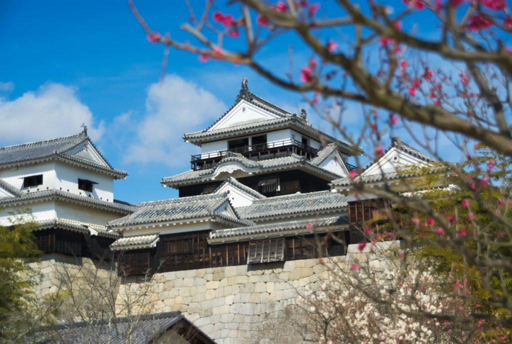 Matsuyama Castle Private Package Tour