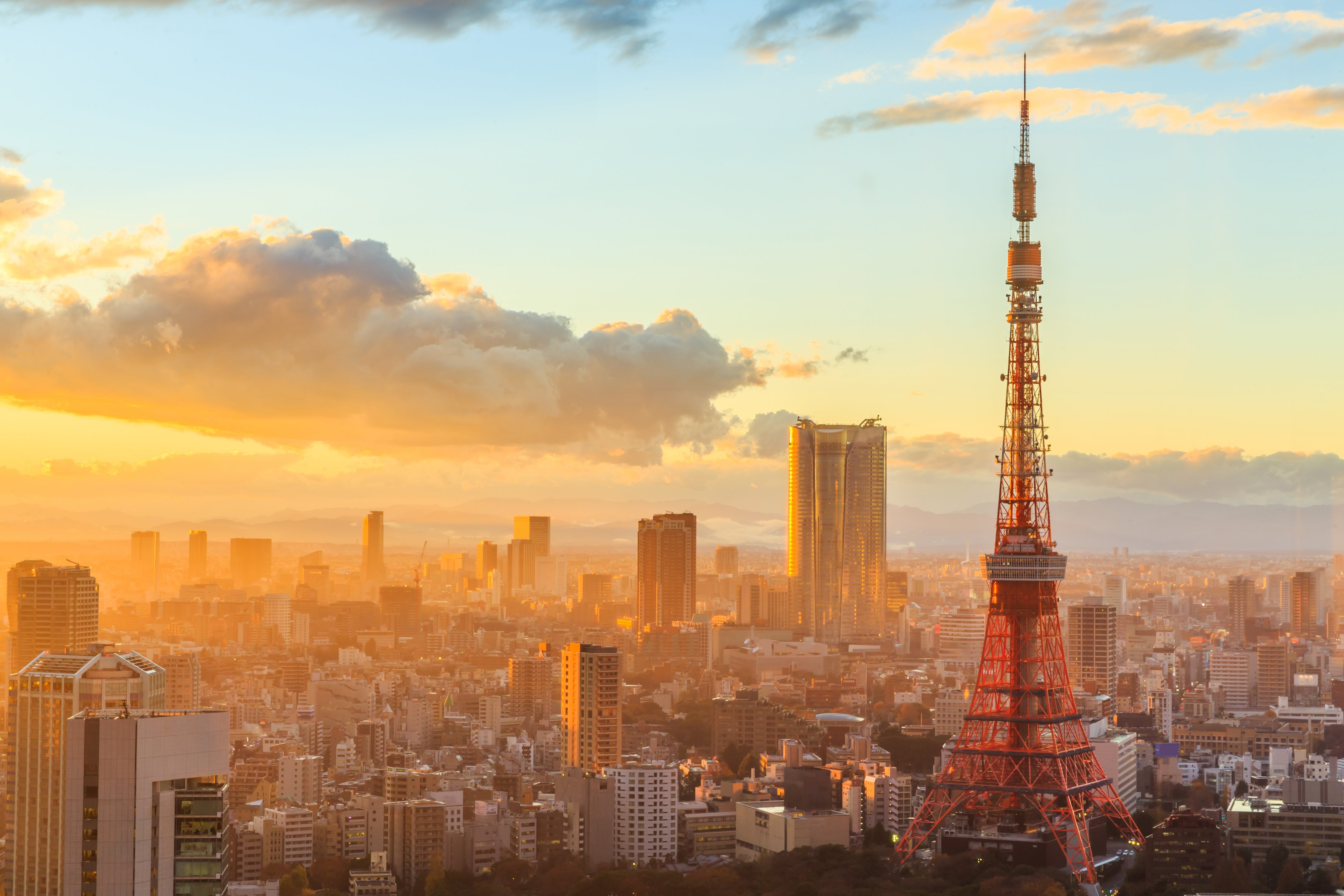 Tokyo Morning Tour Private Package Tour