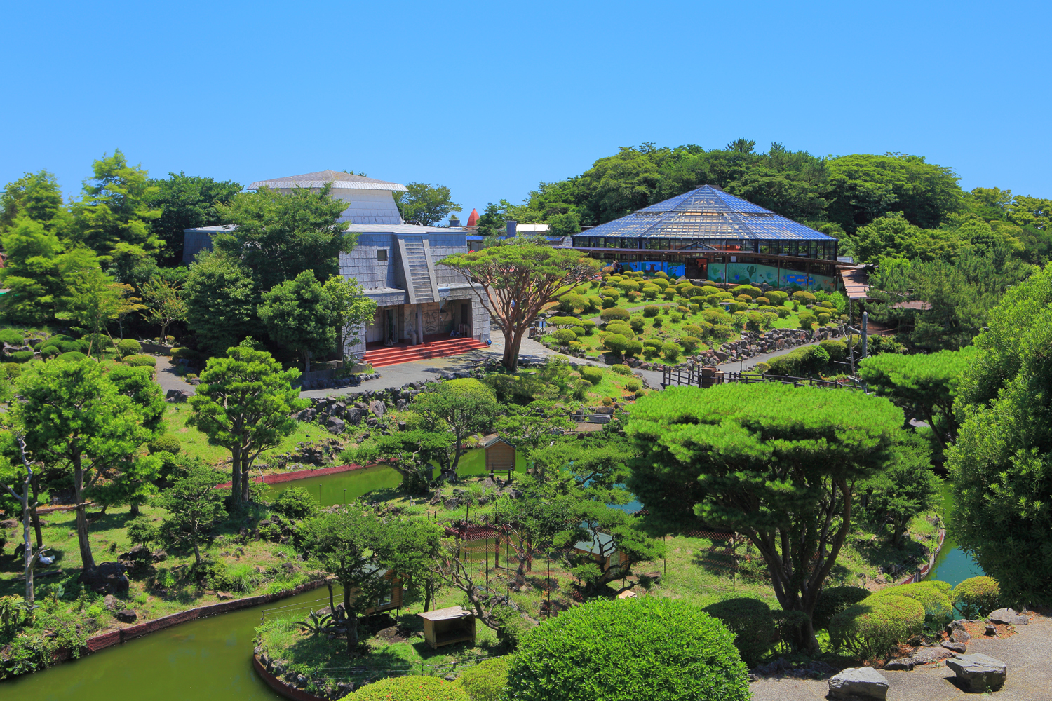 Discover Izu Shaboten Museum Private Package Tour