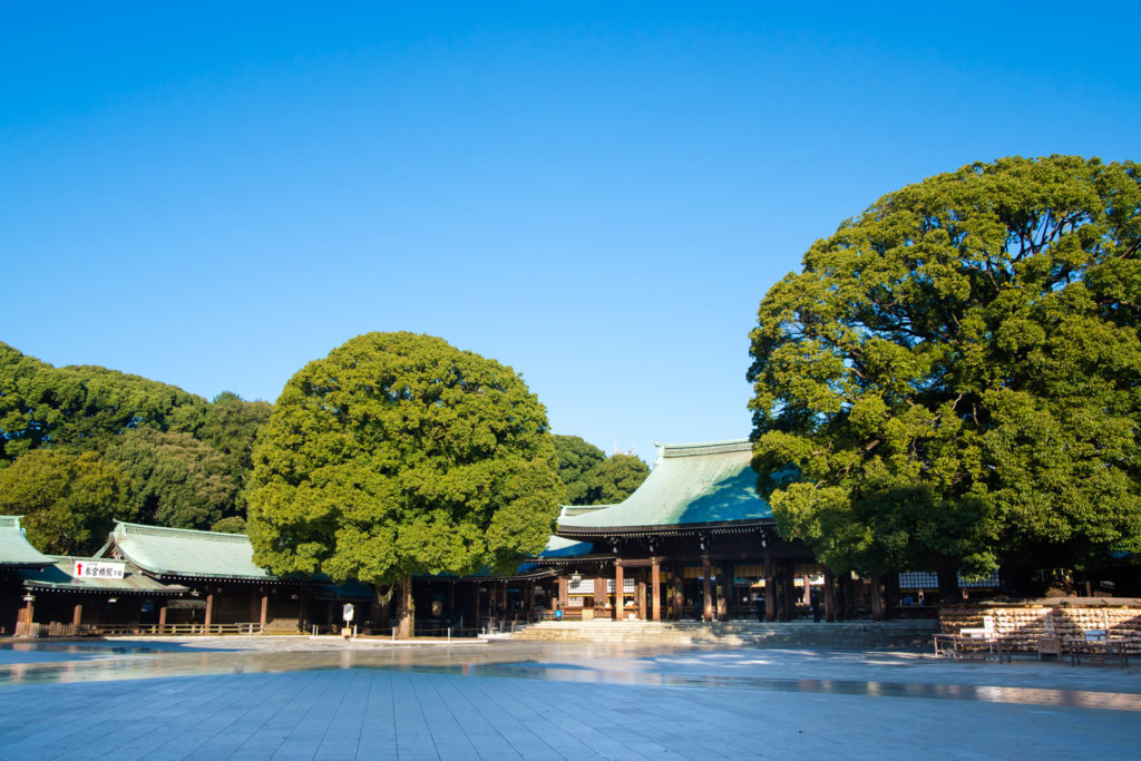 Meijijingu Shrine Private Package Tour