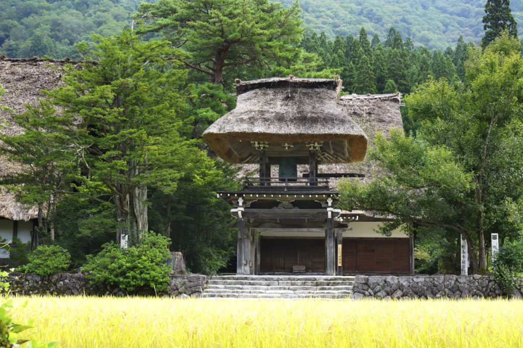 Myozenji Temple Museum Private Package Tour