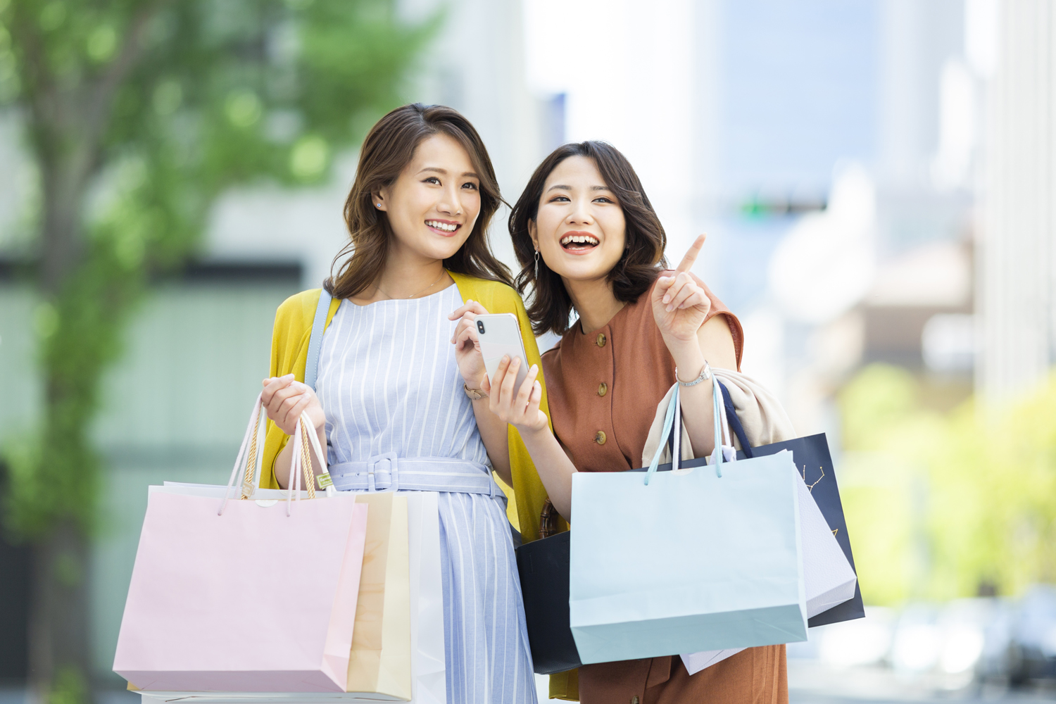 Tokyo Half Day Shopping Tour Private Package Tour