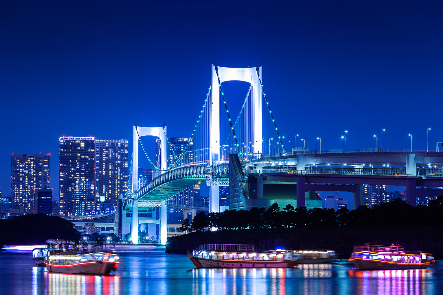 Tokyo Private Cruise with Free Flow Champagne Private Package Tour