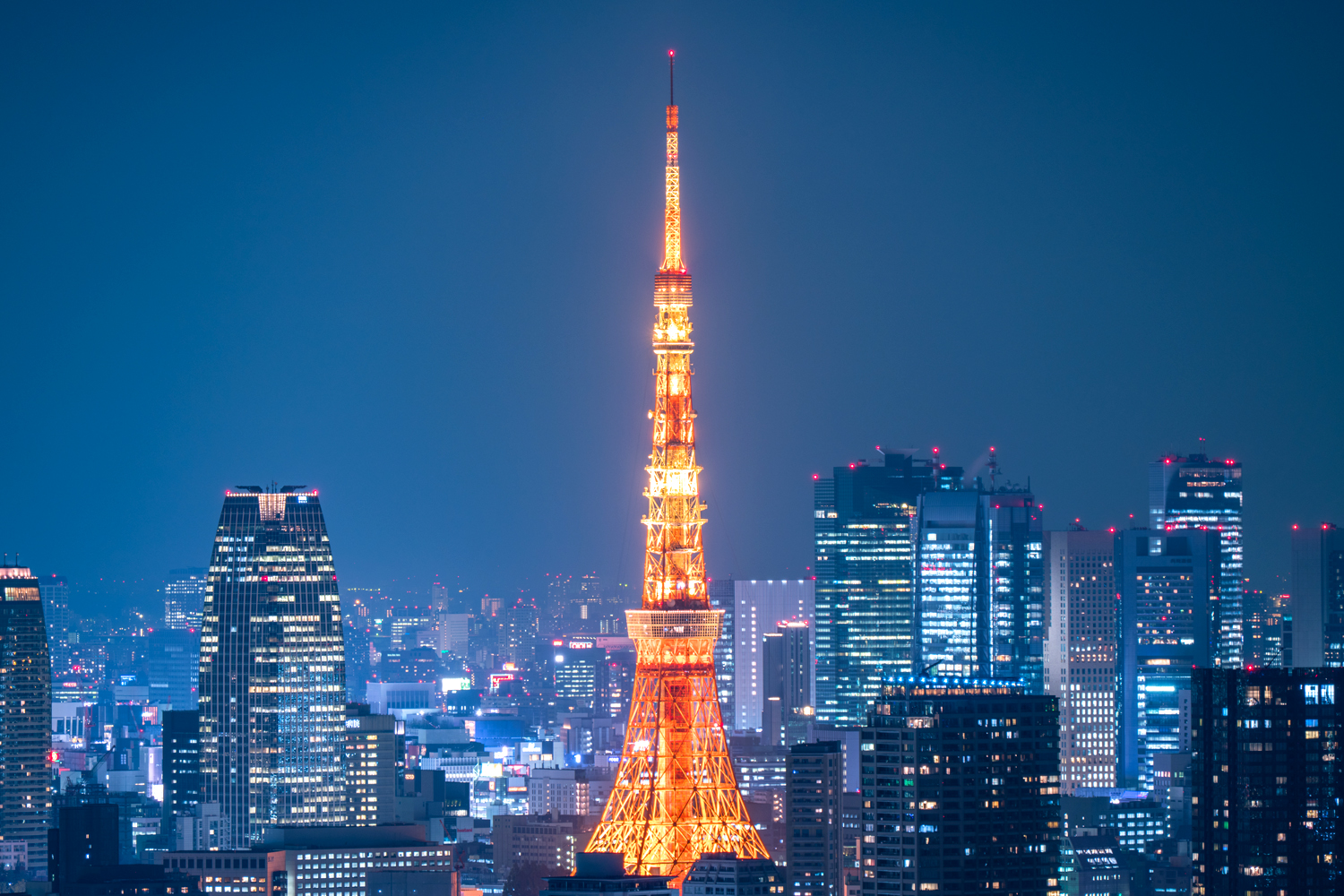 Tokyo Evening Tour Private Package Tour