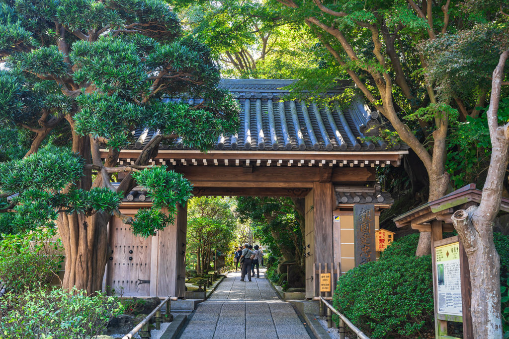 Hokokuji Kamakura Highlights Private Package Tour