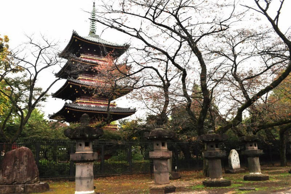 Kaneiji Temple Discover Historical Sites in Tokyo Private Package Tour
