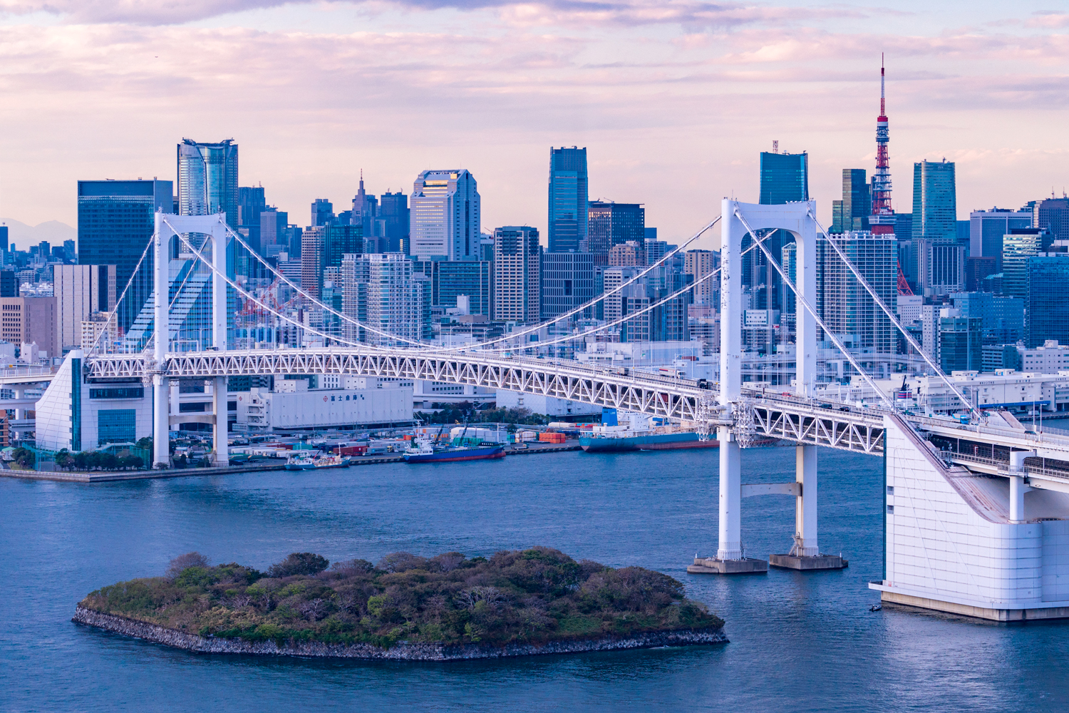 Tokyo Bay Private Cruise with Cyrotherapy Cryo Body Care Private Package Tour