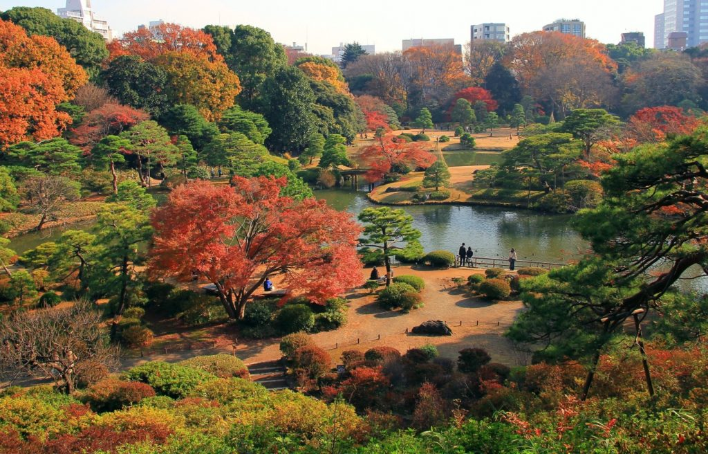 Rikugien Autumn in Tokyo Private Package Tour