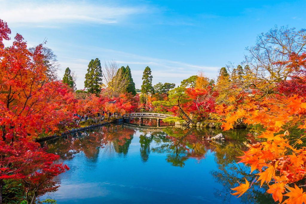 Eikando Autumn in Kyoto Private Package Tour