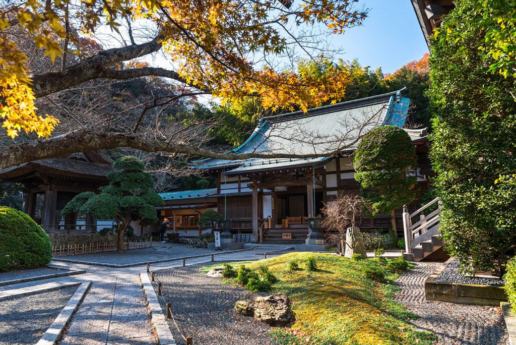 Hokokuji Temple Kanagawa in Autumn Private Package Tour