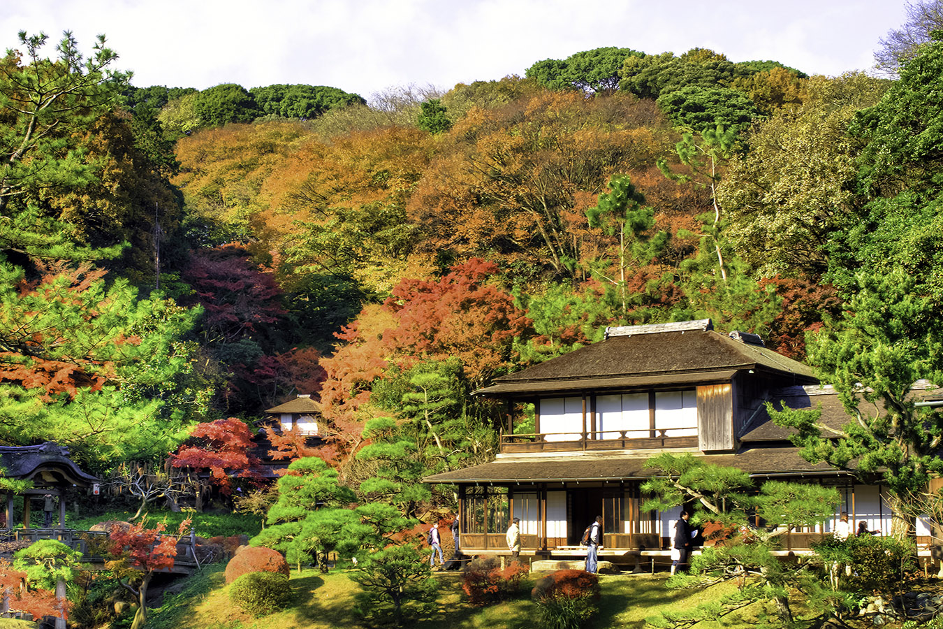 Sankeien Garden Kanagawa in Autumn Private Package Tour