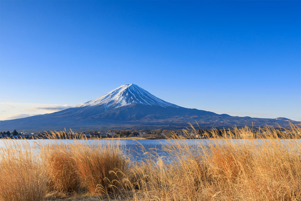 Lake Kawaguchi Discover Aokigahara and Fuji area Private Package Tour