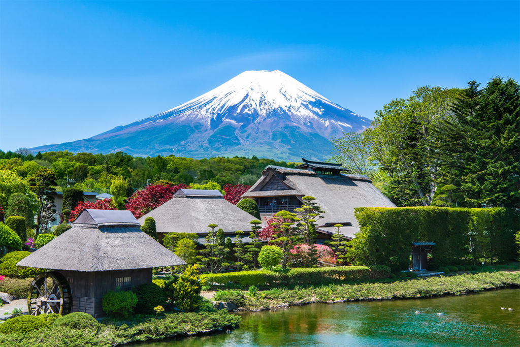 Oshino Hakkai Discover Aokigahara and Fuji area Private Package Tour