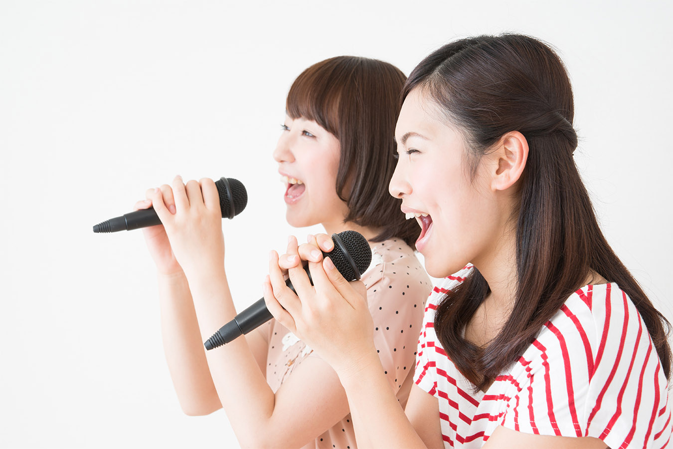 Karaoke Experience Private Package Tour