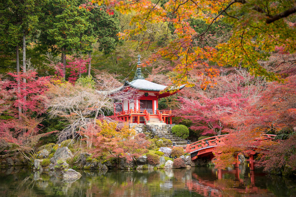Daigoji Tofukuji Autumn in Kyoto Private Package Tour