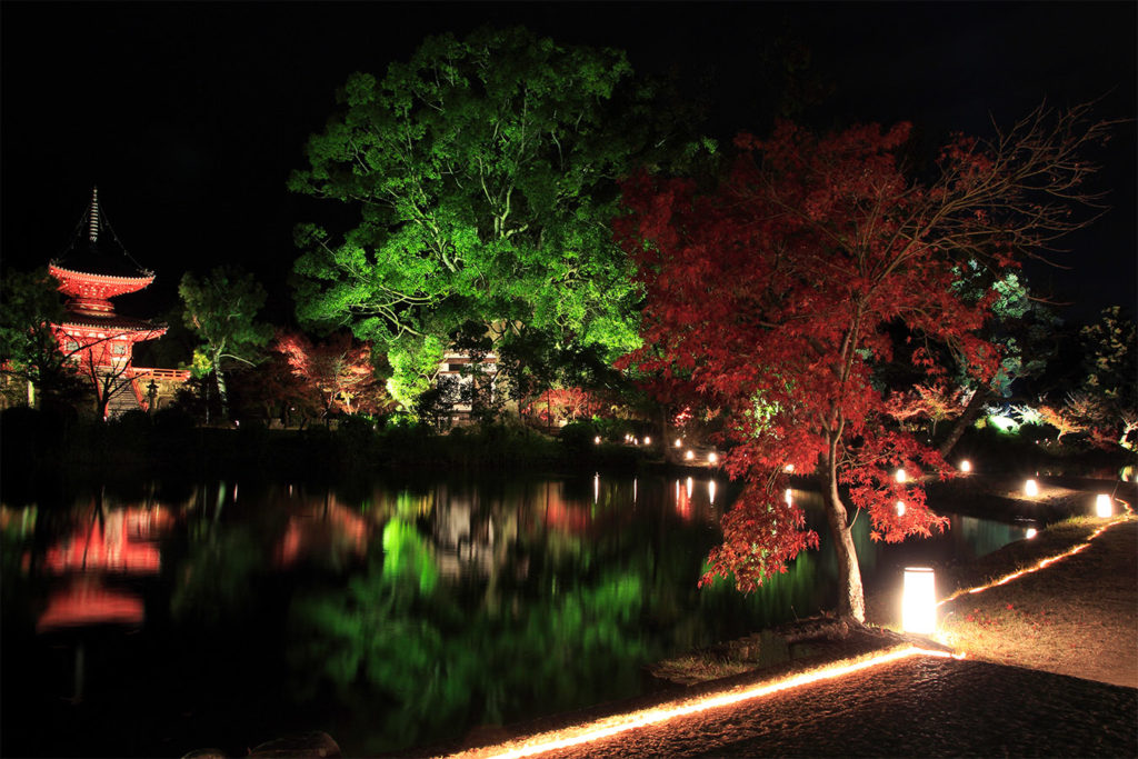 Daikakuji Autumn in Tokyo Private Package Tour