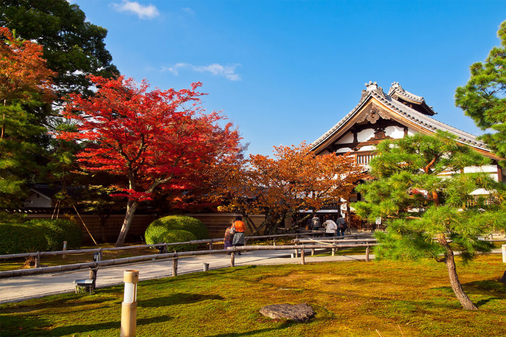 Kodaiji Tofukuji Autumn in Kyoto Private Package Tour
