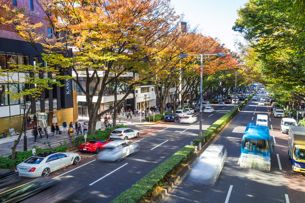 Omotesando and Aoyama Autumn in Tokyo Private Package Tour