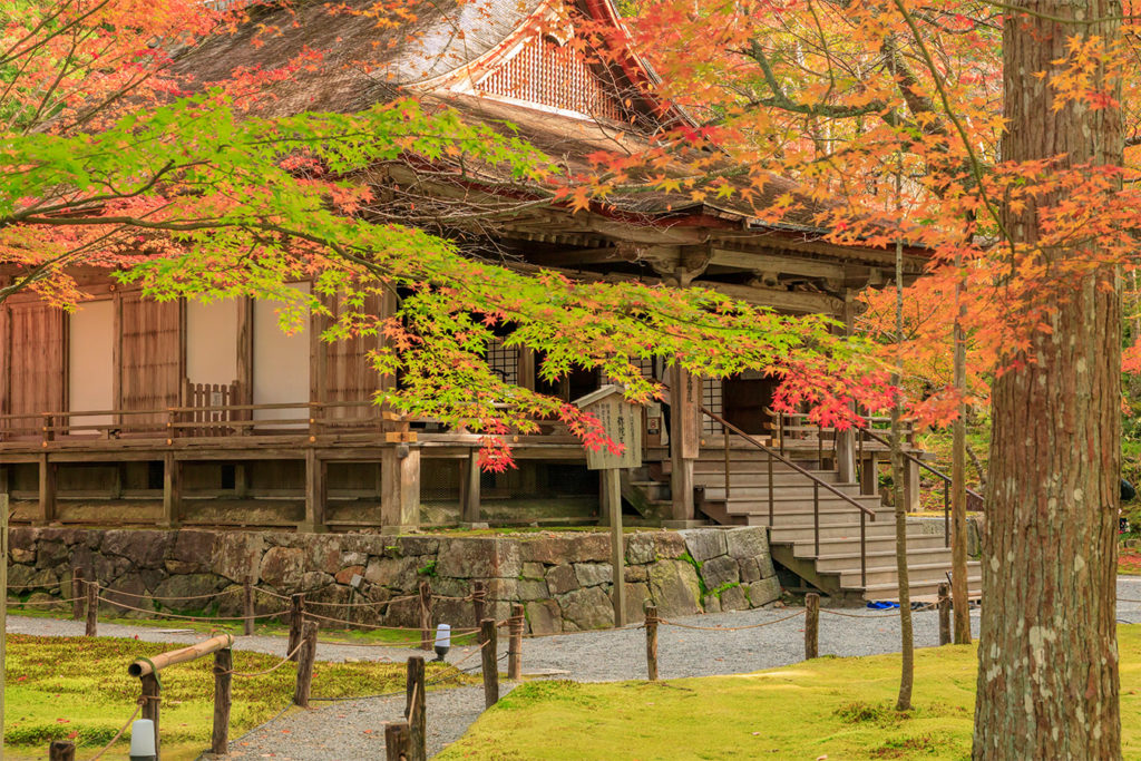 Sanzenin Tofukuji Autumn in Kyoto Private Package Tour