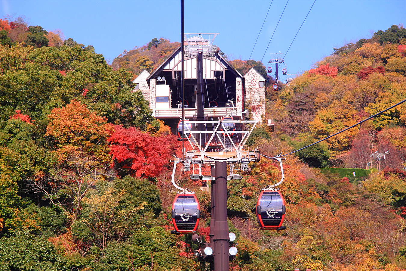 Autumn in Kobe Private Package Tour