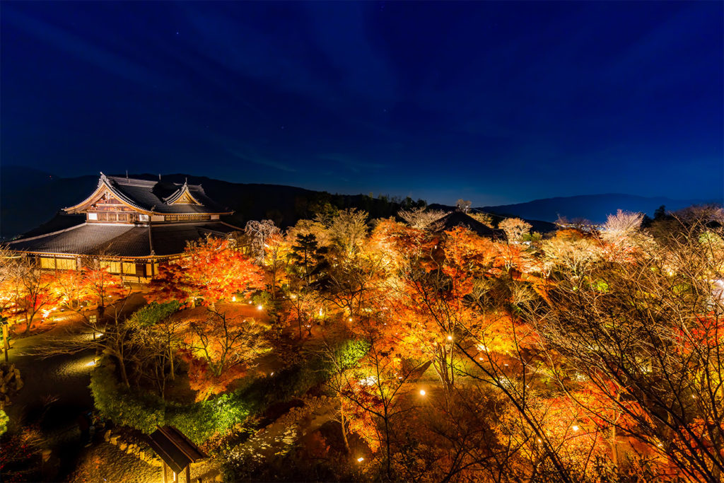 Shorenin Autumn in Kyoto Private Package Tour