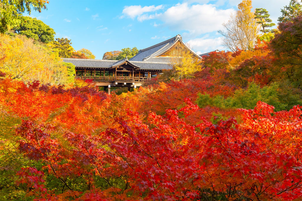 Tofukuji Autumn in Kyoto Private Package Tour