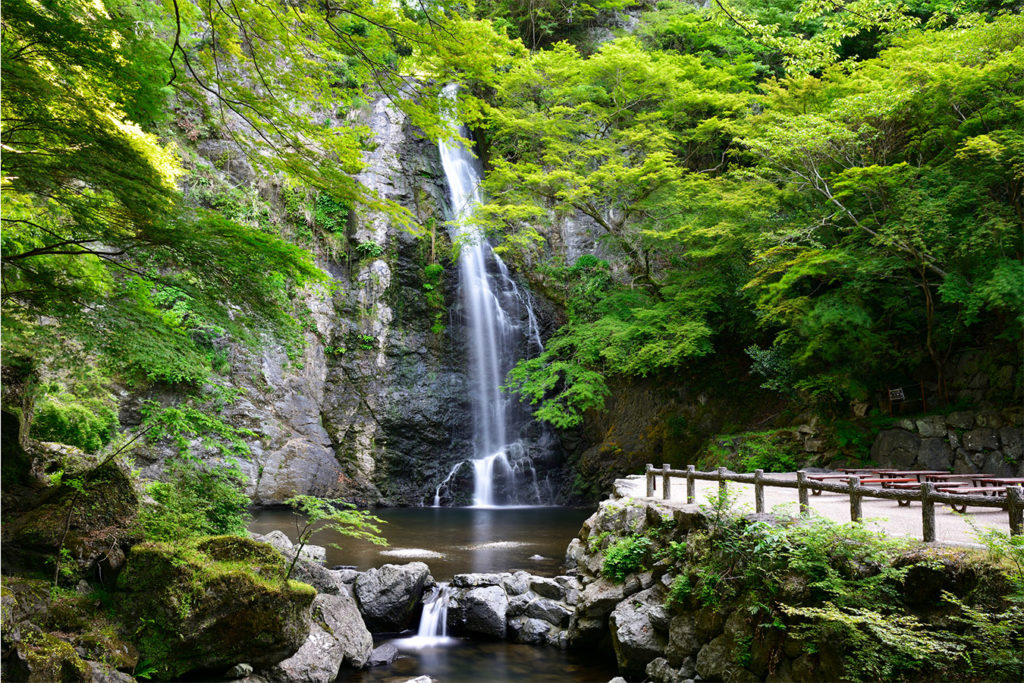 Minoo Park and waterfall Private Package Tour