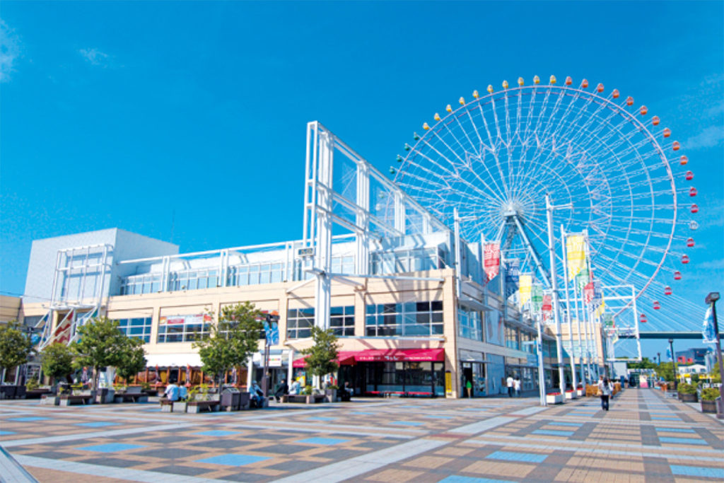 Tempozan Ferris Wheel Osaka with Children Private Package Tour