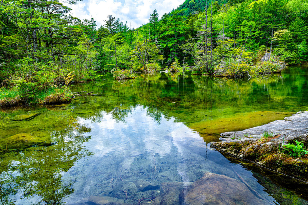 Myojin-ike Pond The Beauty of Kamikochi Private Package Tour