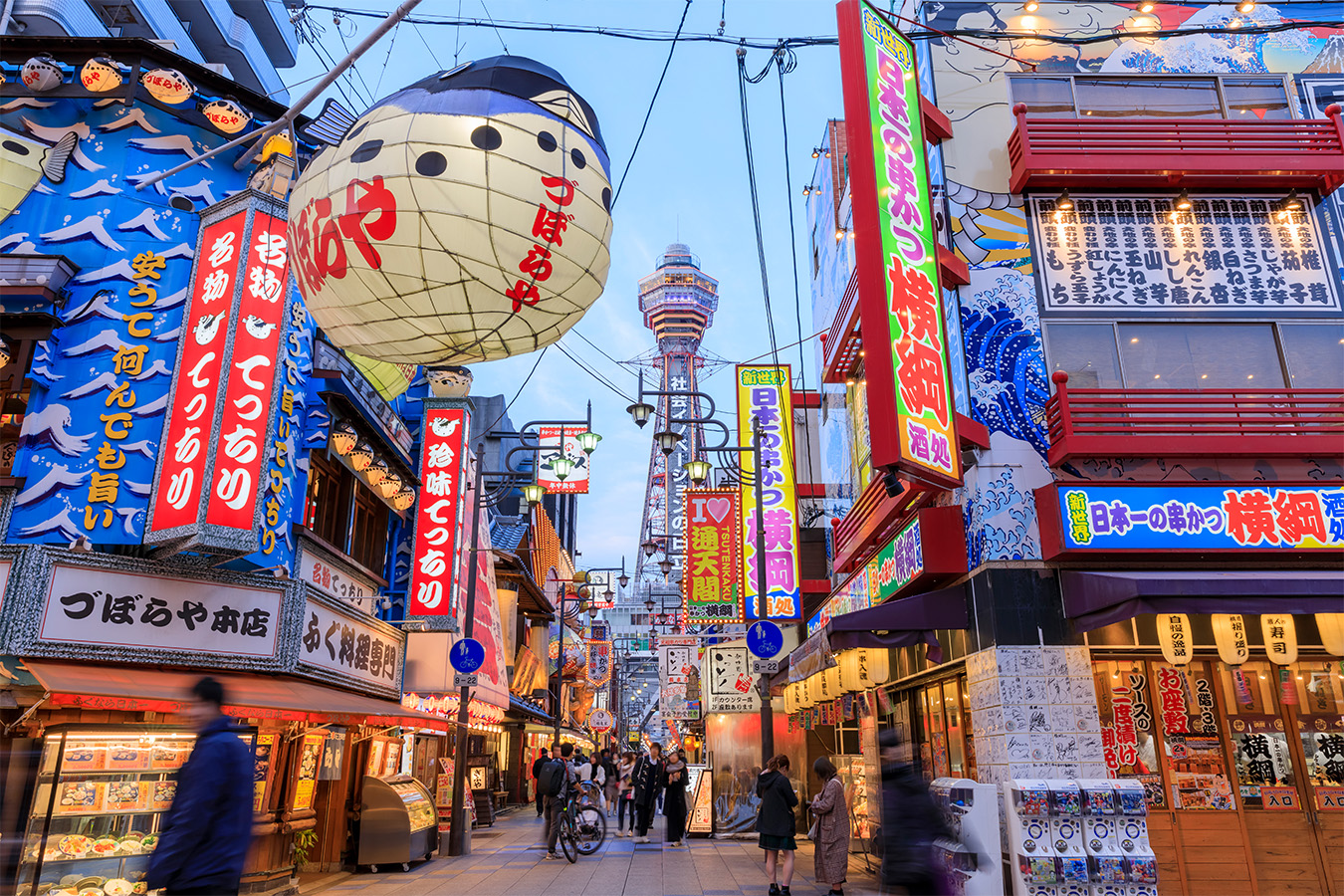 Osaka with Children Private Package Tour