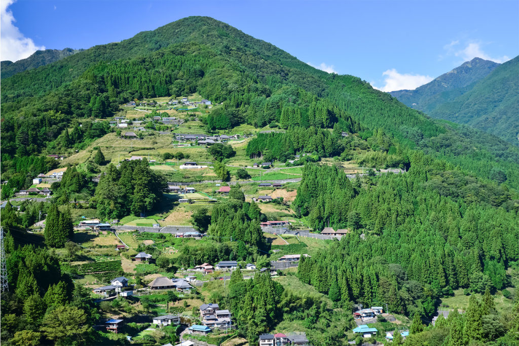 Ochiai Village Explore Iya Valley area Private Package Tour